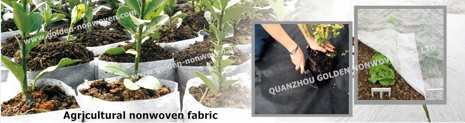 UV-resistant agriculture non woven cover,100% virgn polypropylene non woven  fabric non woven for tree cover