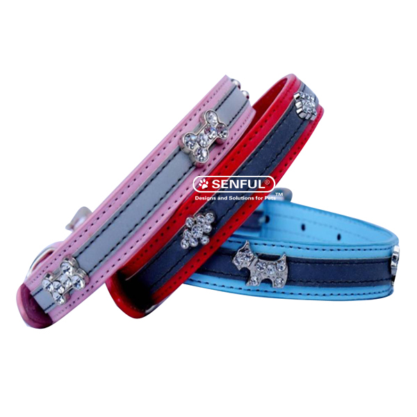 Pet Training Safety Lead Collar--Factory Direct Selling