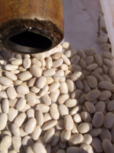 Small size White Kidney Beans White Kidney Beans HPS , low price WKB 300-320pcs, 320-340pcs