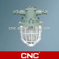 DGS-60/127B explosion proof fluorescent light fitting