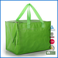 OEM disposable polyester cooler bag/insulating effect cooler bag for frozen food
