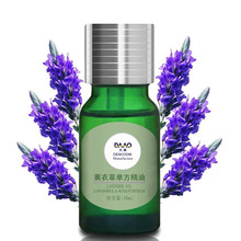 Alibaba.com hot sell OEM/ODM supplied 10ml-120m 100% Natural Lavender Aromatherapy Essential Oil can private label glass bottle