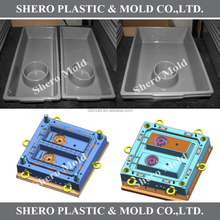 plastic injection mould for reptile tub