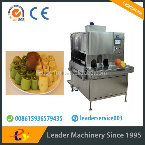 Leader brand best selling products kiwi berry strip equipment