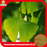 Chinese Herb 100% Natural Ginkgo Biloba Extract/Ginkgo Flavone 24%/Ginkgolides 6% with Good Quality Provided by ISO Manufacture