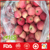 Brand new fuji with low price fresh fruits apples