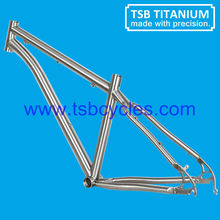 China titanium mountain bike frame with cheap price TSB-WHM1001