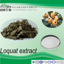 Factory supply Folium Eriobotryae extract of Ursolic acid 98% /loquat fruit extract