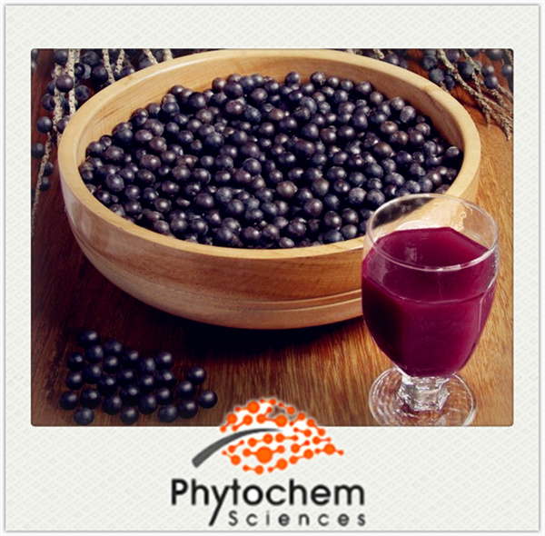 Organic Anti-aging Acai Berry Extract Powder 4:1/10:1/20:1 Anthocyanidin