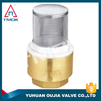 China Manufacturer High Quality Wafer Check Valve G Thread Standard Brass Check Valve With Filter Net Quick Connector