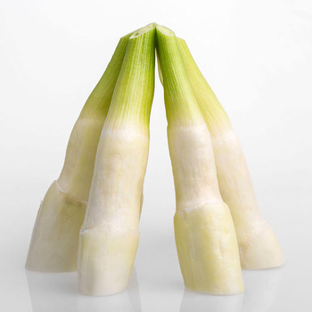 Hotsell Chinese Vegetable Bamboo Shoots