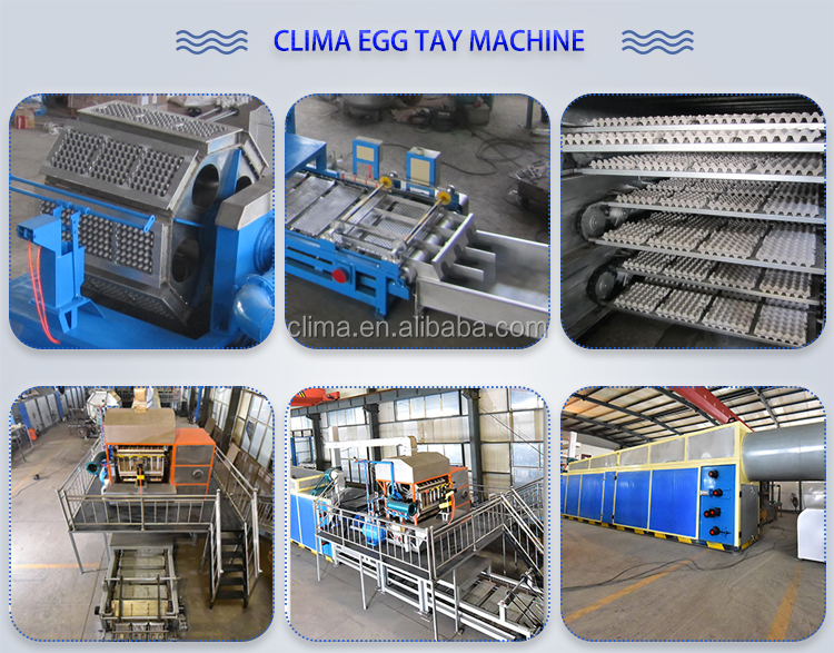 high quality Egg tray egg carton pulp moulding equipment
