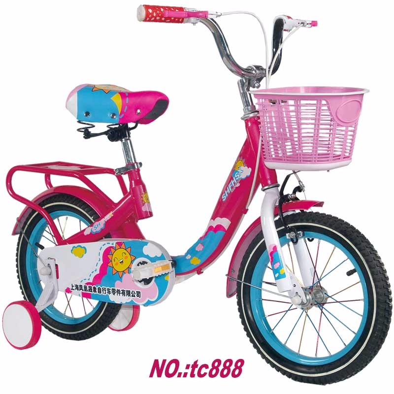 painted whole chain cover kids bike