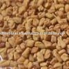 high quality fenugreek seeds