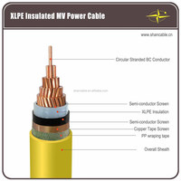 Power Transmission Cables Up to 36kV CU/XLPE/PVC Power Cables