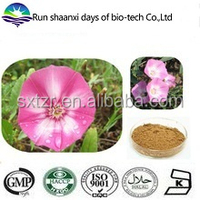KOSHER Convolvulus Arvensis Extract Field Bindweed Extract