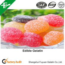 Flavoring Agents,Sweeteners,Emulsifiers,Thickeners,Chewing Gum Bases,Stabilizers Type Gelatin Powder