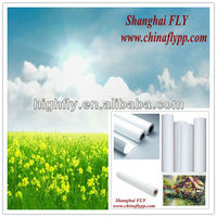 FLY china supplier 150g self adhesive pp paper,matt pp synthetic paper