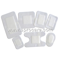 Self Adhesive Absorbent Dressing