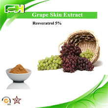 Factory Supply Grape Skin Extract Resveratrol 5% bulk powder. Grape Skin Powder