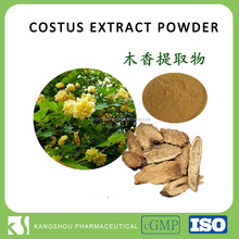 GMP factory provide Natural Saussurea costus root extract indian costus root extract Powder