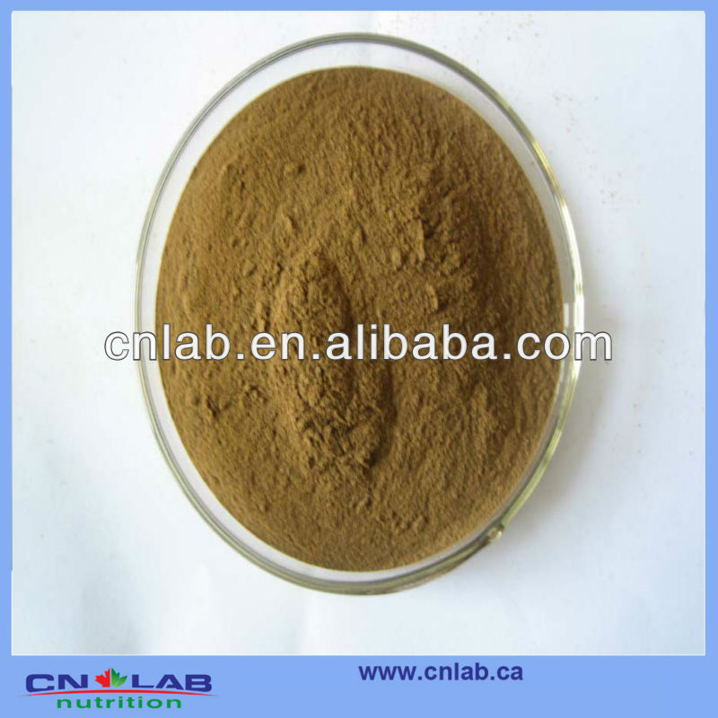 GMP/Haccp/ISO9001 Factory Provide 100% Natural Black Cohosh P.E. in High Quality