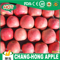 [HOT] Linyi Changhong Fresh Fuji Apples