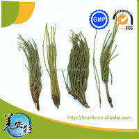 Competitive Press Dried ma huang EphedraLleaves Mahuang Best Supplier