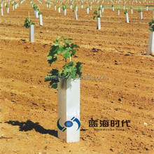 PP Corrugated Plastic Tree Tube /Tree Guard