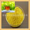 2016 Hot sale natural plant extract from black tea
