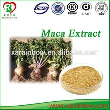Hot selling maca extract extreme with low price