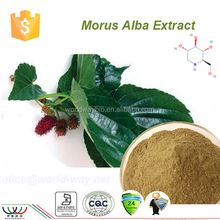 japanese mulberry extract chlorophyll mulberry leaf 1% dnj
