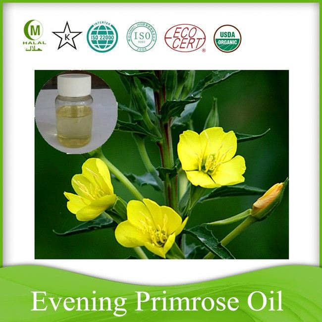 factory supply cold press evening primrose oil
