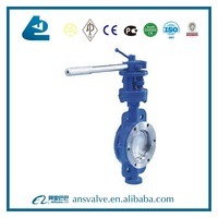GB/T12238 DN150 Hard Seal Triple Offset Manual Butterfly Valve