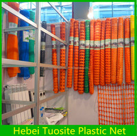 Stretch Net /orange Plastic Net/snow Fence (Hebei Tuosite Plastic Net)