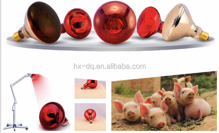 High Qualityexplosion-proof Red Spotlight Bulb short wave infrared reptile heat lamp 115v 450w 250w 100w 75w 50w 25w