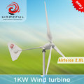 hot sale high quality 1kw wind power turbine system with CE certification