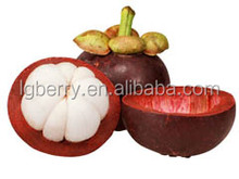 13 years GMP factory bulk supply of Mangosteen extract a-Mangostin
