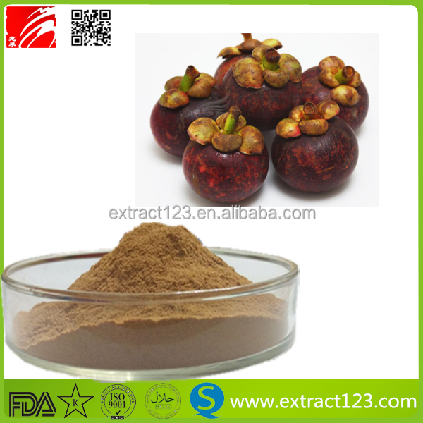 ISO9001 Factory Supply mangosteen fruit extract powder
