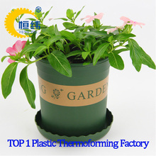 PP flower plants plastic thermoforming pot from shanghai yiyou cup making machine