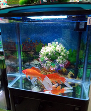 Professional Clear Glass Fish Tank/Aquarium glass sheet
