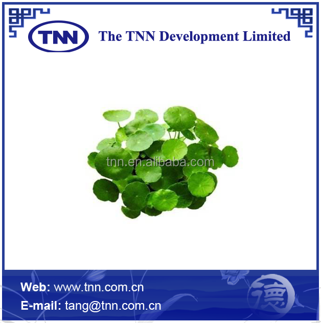 Centella asiatica extract 80%