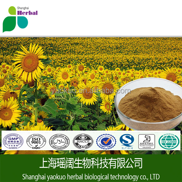 Water-solubl Sunflower Seed Extract 5:1,10:1,20:1