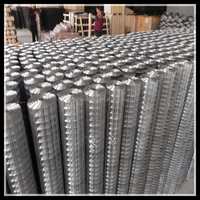 Factory!!!! Factory!!!! hot dipped galvanized square wire mesh,black wire cloth ,welded wire mesh ( Anping Factory)