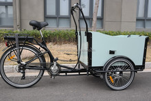 3 Wheel electric trike for adult cargo bike UB9019E