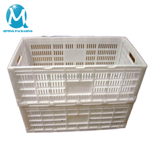 High Quality Egg Plastic Transport Crate For Sale