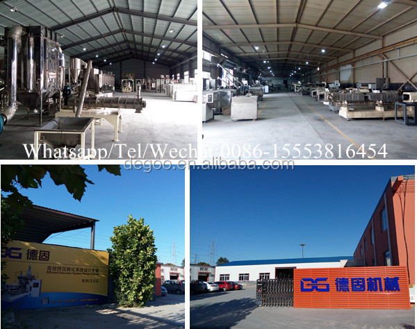 Nestle cocoa breakfast cereal flakes corn snack production line Jinan DG machinery