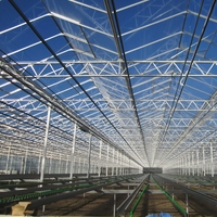 Tempered Low Iron Greenhouse Glass