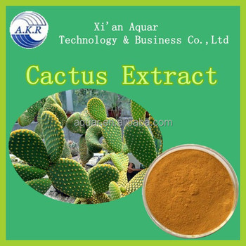 Wholesale Cactus Plant Extract 20:1 50:1 100:1Powder,Natural Cholla Stem Extract Powder
