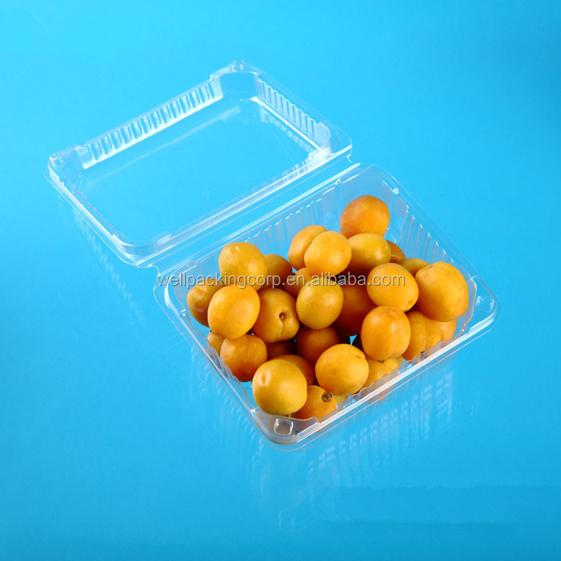 transparent china manufacturer free sample cheap PET clear plastic fruit packing container
